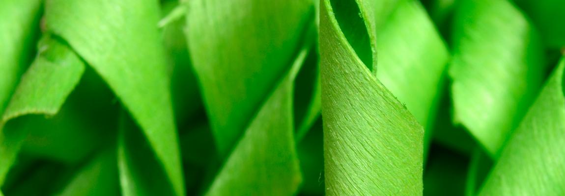 texturaverde
